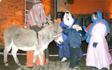 Donkey hire for church events