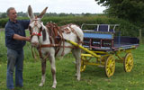 Stonehill Donkeys provide donkeys for  Special events and appearances, Christenings, Birthday Party, TV and Theatre church events stag and hen party's